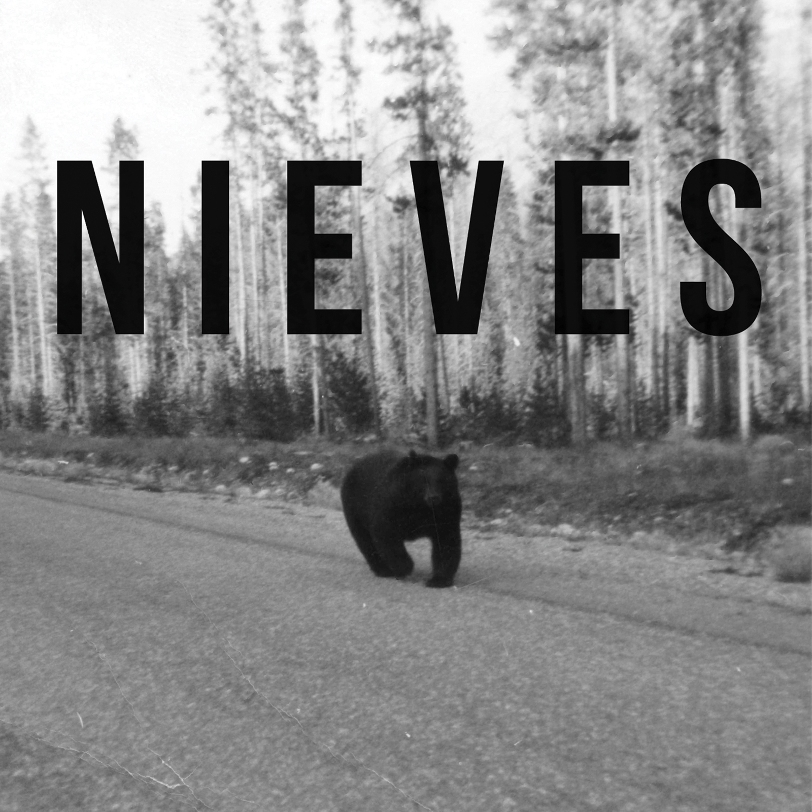 iTunes Nieves Cover 1600x1600